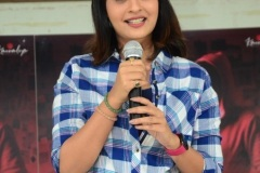 5ws-Movie-First-Look-Launch-6