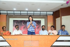 5ws-Movie-First-Look-Launch-7