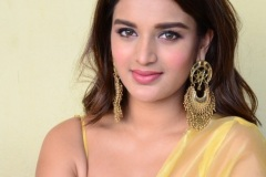 Agerwal-Nidhhi-New-Photos-13