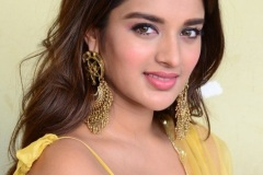 Agerwal-Nidhhi-New-Photos-18