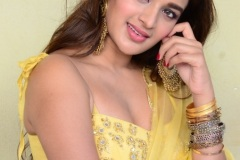 Agerwal-Nidhhi-New-Photos-22