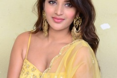 Agerwal-Nidhhi-New-Photos-5