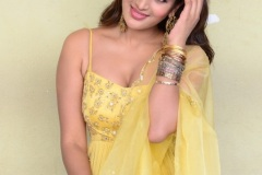Agerwal-Nidhhi-New-Photos-6