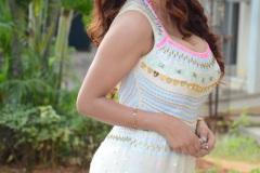 Anveshi-Jain-New-Photos-18