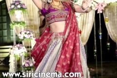 Archana-Jagadish-Sangeet-Photos-11