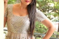 Bhanu-Sree-new-photos-13