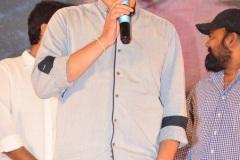 Bheeshma-success-meet-15