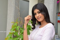 Divya-Rao-new-photos-9