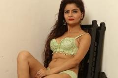 Gehana-Vasisth-New-Bikini-Stills-2
