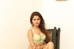 Gehana-Vasisth-New-Bikini-Stills-5