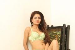 Gehana-Vasisth-New-Bikini-Stills-8