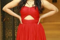 Hebah-Patel-new-photos-7