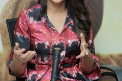 Lavanya-tripati-interview-Photos-1