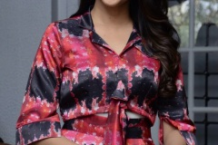 Lavanya-tripati-interview-Photos-12