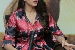 Lavanya-tripati-interview-Photos-17