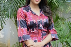 Lavanya-tripati-interview-Photos-2