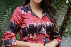 Lavanya-tripati-interview-Photos-8