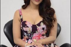 Nabha-Natesh-interview-Photos-17