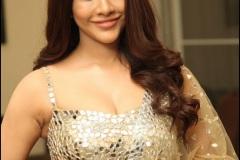 Nabha-Natesh-Latest-Photos-12