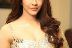 Nabha-Natesh-Latest-Photos-9