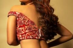 Nabha-Natesh-new-stills-2
