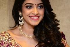 Nakshatra-new-photos-12