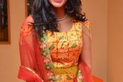 Nakshatra-new-photos-10