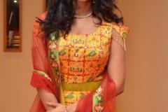 Nakshatra-new-photos-4