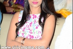 Parari-movie-Audio-launch-Photos-1