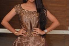 Preethi-Asrani-new-photos-1