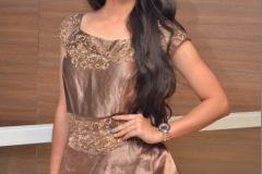 Preethi-Asrani-new-photos-10