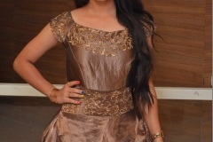 Preethi-Asrani-new-photos-4
