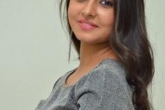 Preethi-Asrani-new-photos-5