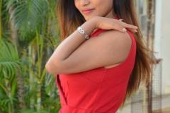 Priya-Augastien-New-Photos-13