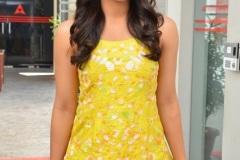 Rashmika-Mandanna-interview-photos-14