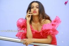 Shruthi-Shetty-Spicy-Galary-15