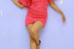 Shruthi-Shetty-Spicy-Galary-20