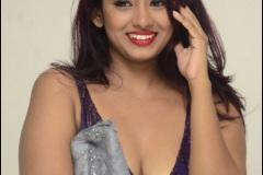 Silpa-Nayak-New-Spicy-Photos-6