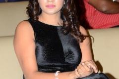 Thippara-Meesam-Movie-Pre-Release-Event-24