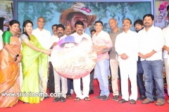 Tupaki-Ramudu-Pre-Release-event-23