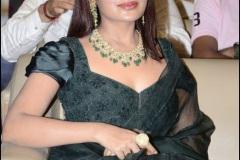 Vijaya-Raghavan-movie-Pre-release-event-Photos-6