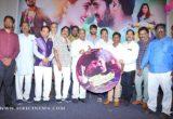 Nenu Naa Nagarjuna Audio launch