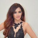 Malvika Sharma New Photos