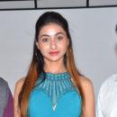 Only Nenu Movie Trailer Launch photos